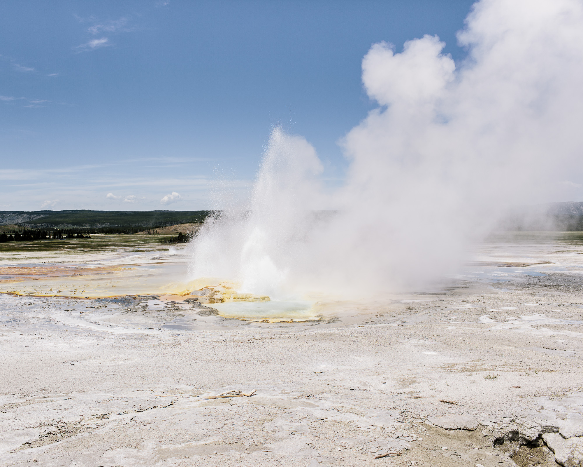 Michael Friberg Yellowstone